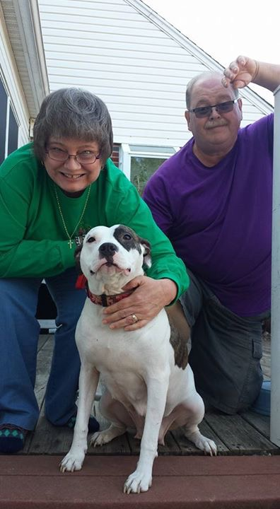 After months of searching Stella found her furever family!!