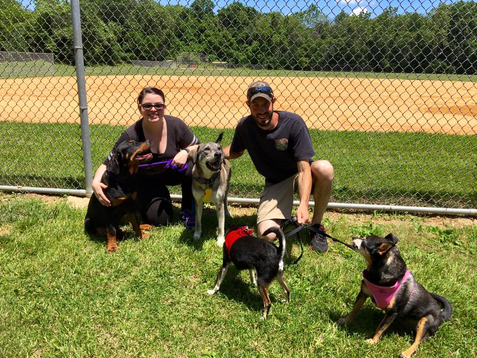 Tiger Lily was adopted by Jessica and Christopher with her furry siblings!
