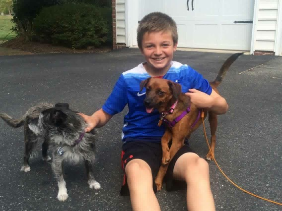 Gidget (right) is bound to have fun in her furever home!