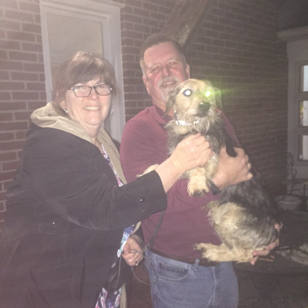 The Dyson family scooped up Khoda into their furever family!
