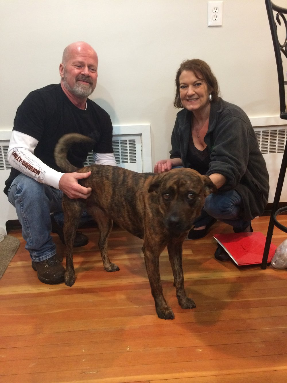 Cassie couldn't wait to get to Maryland and scoop up her furever family!