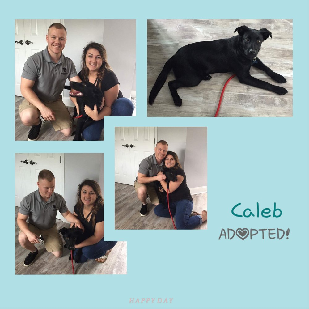 Caleb made his family complete!