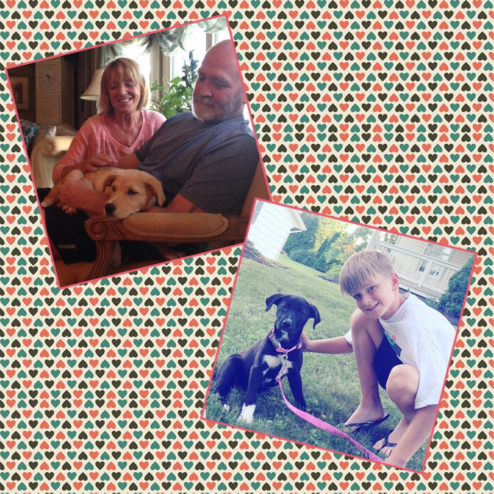 Aubrey & Ainsley found their wonderful furever homes!!