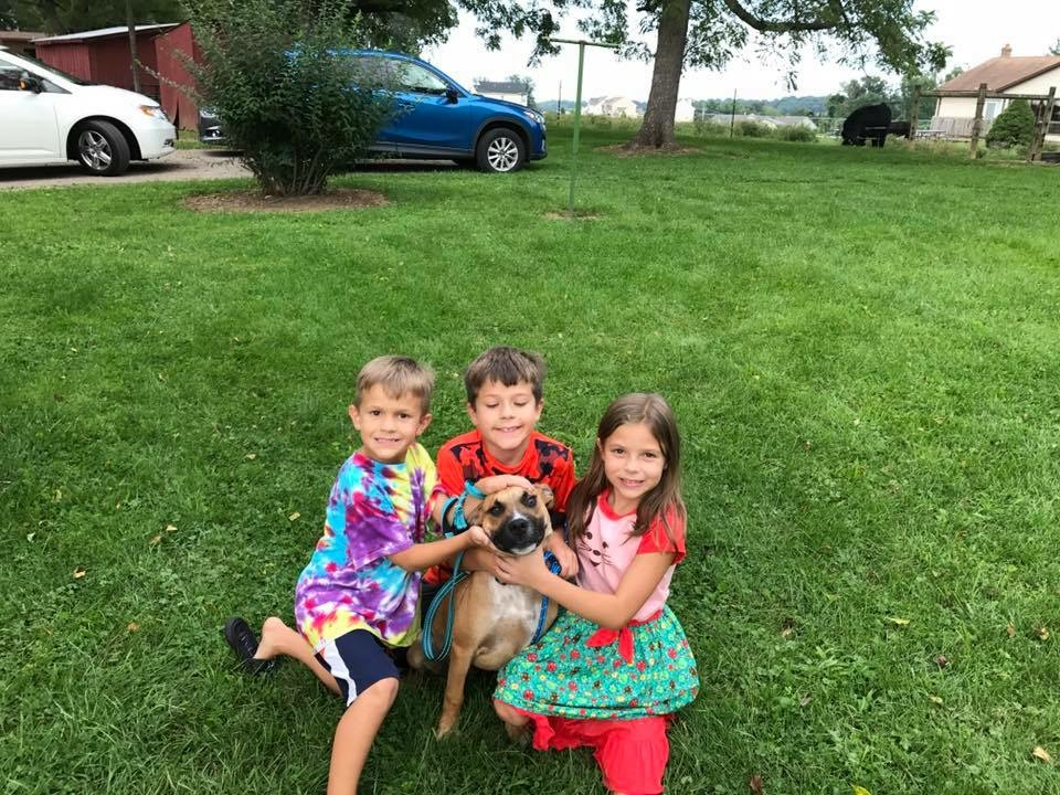 Fisher will have lots of fun in his new home with 3 kids to run with!