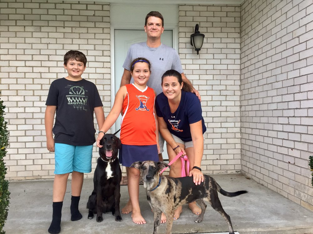 Layla (right) found her furever home with the Winter family!