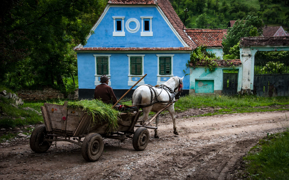 Horse and cart in Transylvania