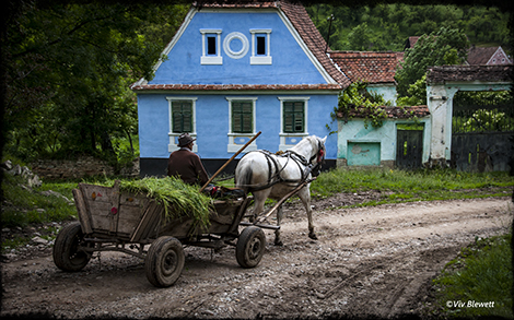 2016-06-tv-hay-cart_27815869571_o.jpg