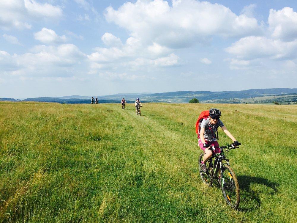 field and bike.jpg