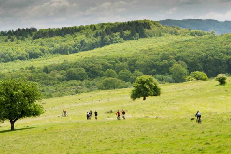 Cycling Transylvania