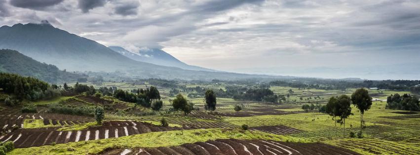 rwanda-landscape_africa_kellie-netherwood 2.jpg