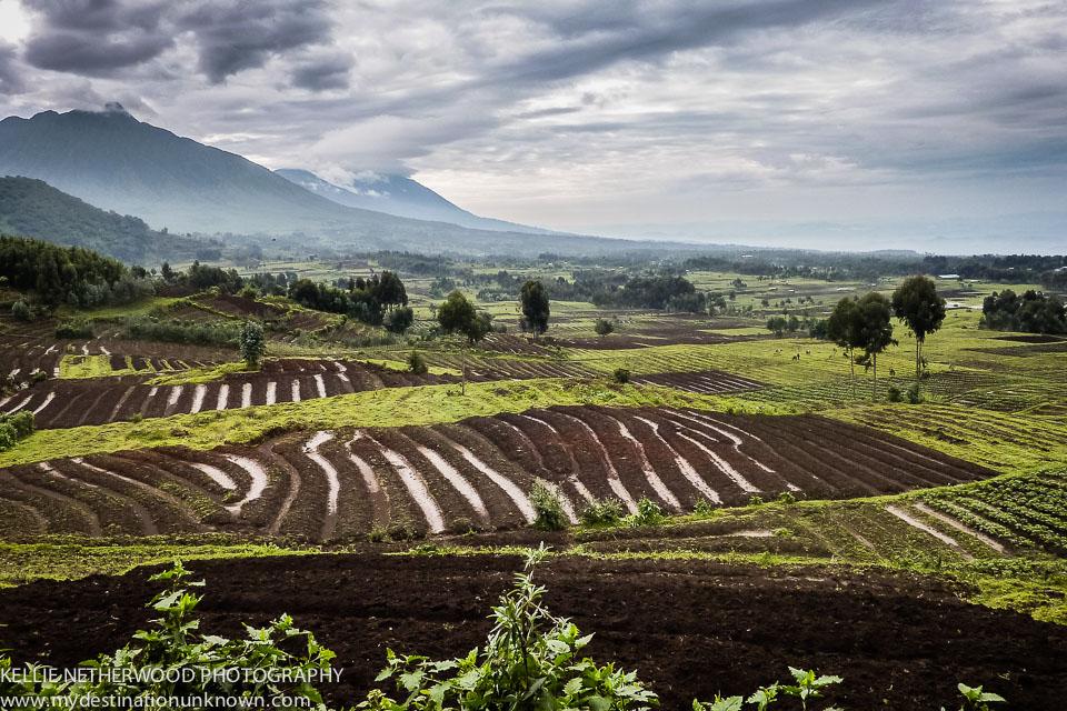 Volcanic Landscape on Day 3.jpg