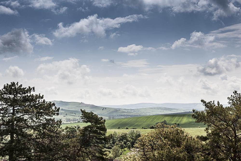 Typical Transylvanian high pasture landscape.JPG