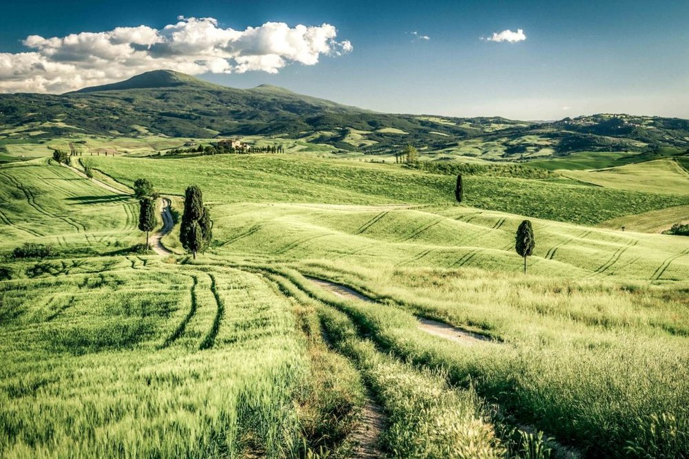 TUSCANY - Discover a land that feels a million miles away fromthe established centres of Florence and Siena andexplore somewhere bursting with medieval citadels,rich forests and wonderful wine and home cooking.