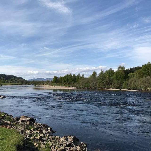 "Another beautiful morning at Dalmarnock, 8"" on the water gauge 🎣 🎣 🎣 🎣 #salmonfishingscotland #scottishsalmonfishing #flyfishing #rivertay #fishtay #fishpal #visitscotland #fishingguide #selfcateringcottage #selfcateringaccommodation #vacation #holidaycottage #taysalmonfishing #flyfishingnation"