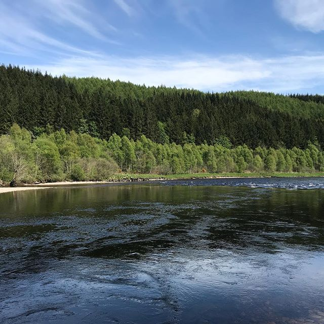 The Glide looking fishy in the low water, fish seen running through here and Dalmarnock bank pool today, still rods available tomorrow, to book fishing Tel 07981811403 or Email colin@fish-tay.com 🎣 🎣 🎣 🎣 #salmonfishing #salmonfishingscotland #rivertay #fishtay #fishpal #fishingguide #visitscotland #selfcateringaccommodation #selfcateringcottage #holidaycottage #flyfishing #flyfishingnation #flyfishingjunkie #flyfishingaddict #taysalmonfishing #springsalmonfishing #salmonfly #salmonpools