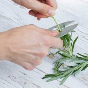 I LOVE this   Kale and Herb Razor  !! How time-consuming is it to de-stem greens or herbs? This does it in seconds and even includes multiple sized holes for various herbs. And WHEN YOU ARE DONE, STICK IT IN THE DISHWASHER!