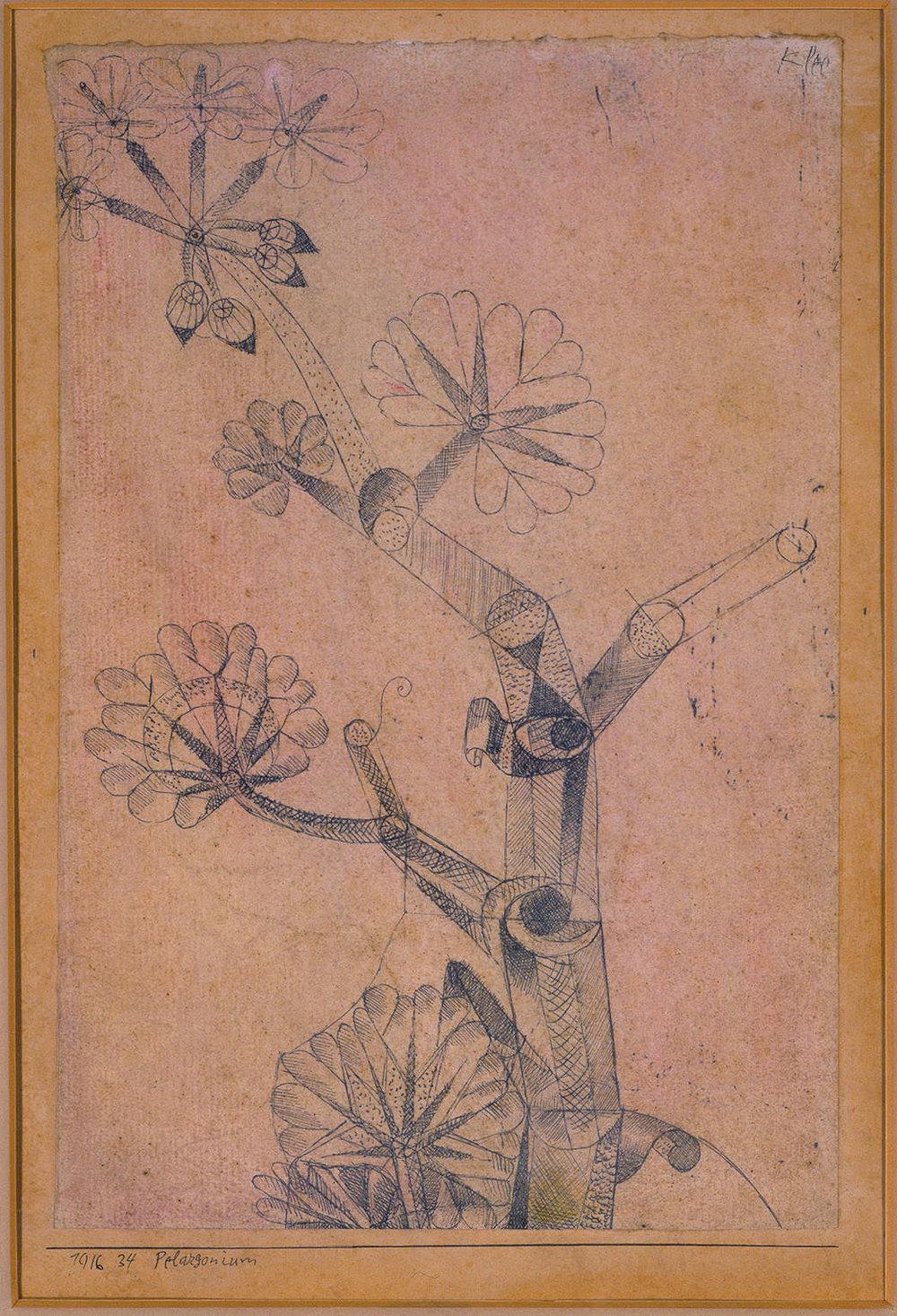 Abb.46 Paul Klee, Pelargonium, 1916, 34 , Feder auf Papier auf Karton , 21,3 x 14 cm , Privatsammlung, Courtesy Galerie Pangée © Zentrum Paul Klee, Bern, Archiv