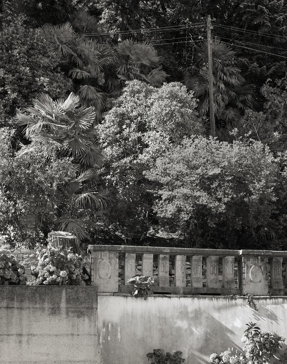 Abb. 14  Garten des Sanatoriums Viktoria (heute Clinica Santa Croce) in Locarno-Orselina , 2005, Fotograf: Dominique Uldry ©Bern: Dominique Uldry Die Aufnahme entstand beim westlichen Seiteneingang der heutigen Klinik.