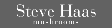 Steve Haas Mushrooms