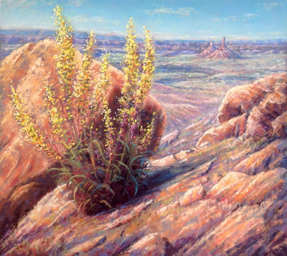 A View into the Valley - $1200