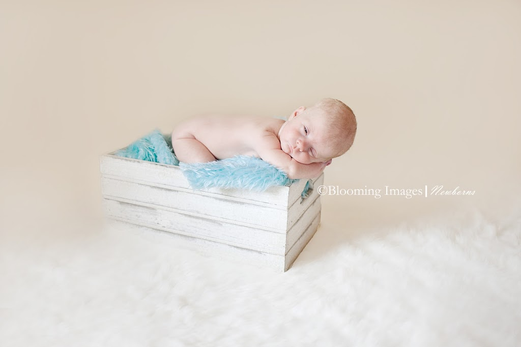 Blooming-Images-Albuquerque-Newborn-Photographer-Photographer-in-Albuquerque
