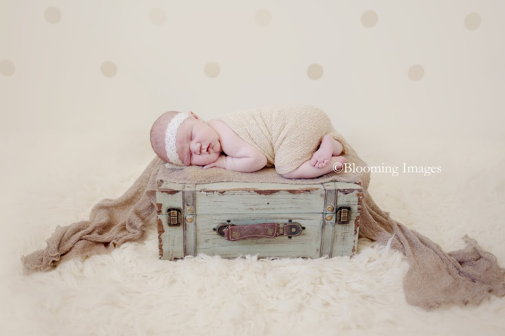 Albuquerque, Santa Fe, New Mexico Newborn Photographer, Newborn Photos, Newborn Photography, travel newborn photographer