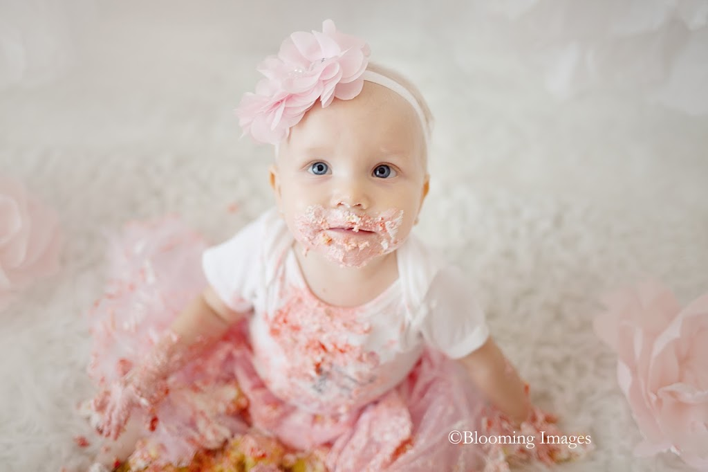 Albuquerque Cake Smash Photographer, Albuquerque One Year Photos, Birthday Pictures