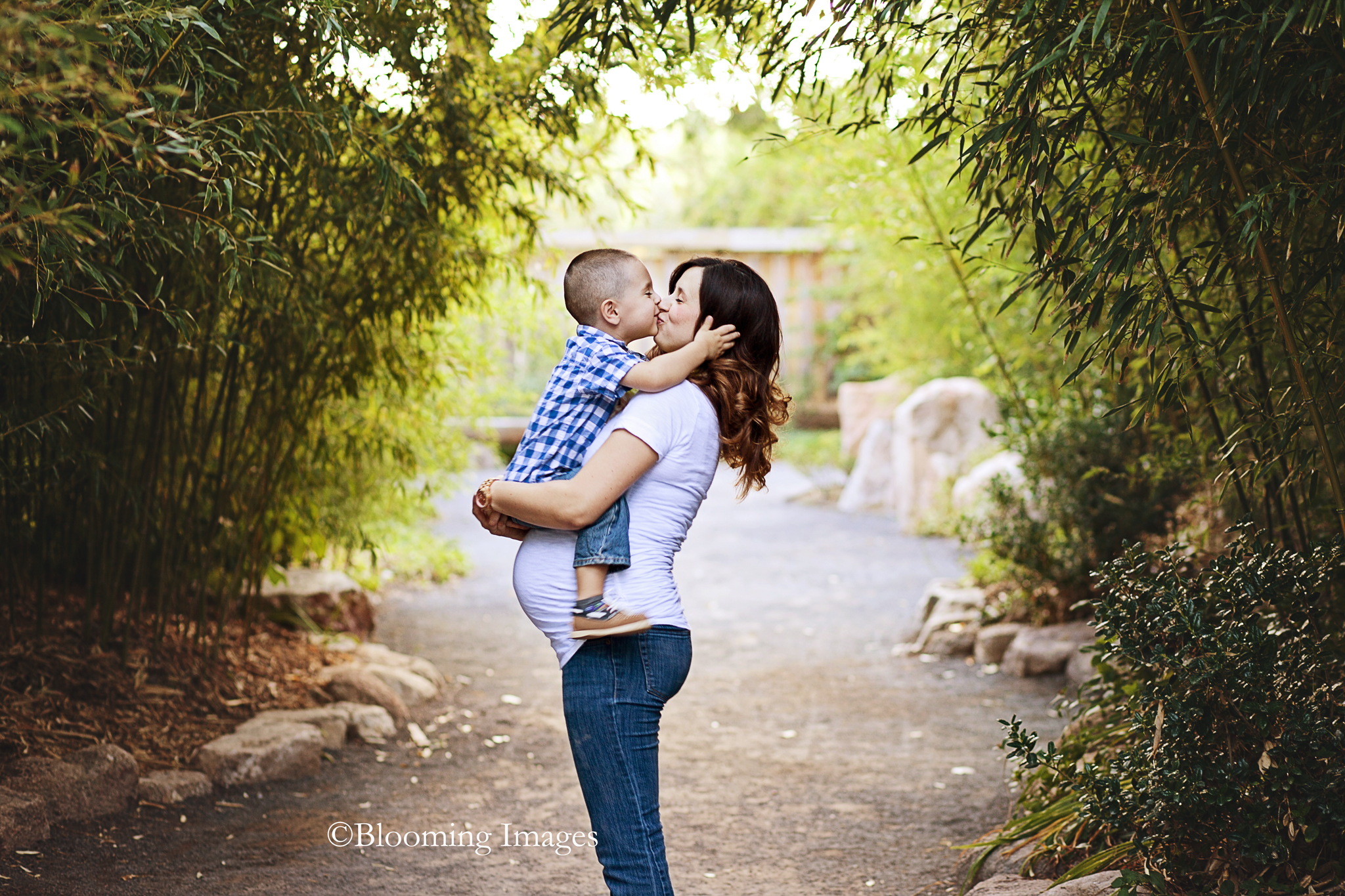 Albuquerque Maternity Photographer, Maternity Photographers in Albuquerque, Maternity Photographer, Botanical Gardens Maternity Photos