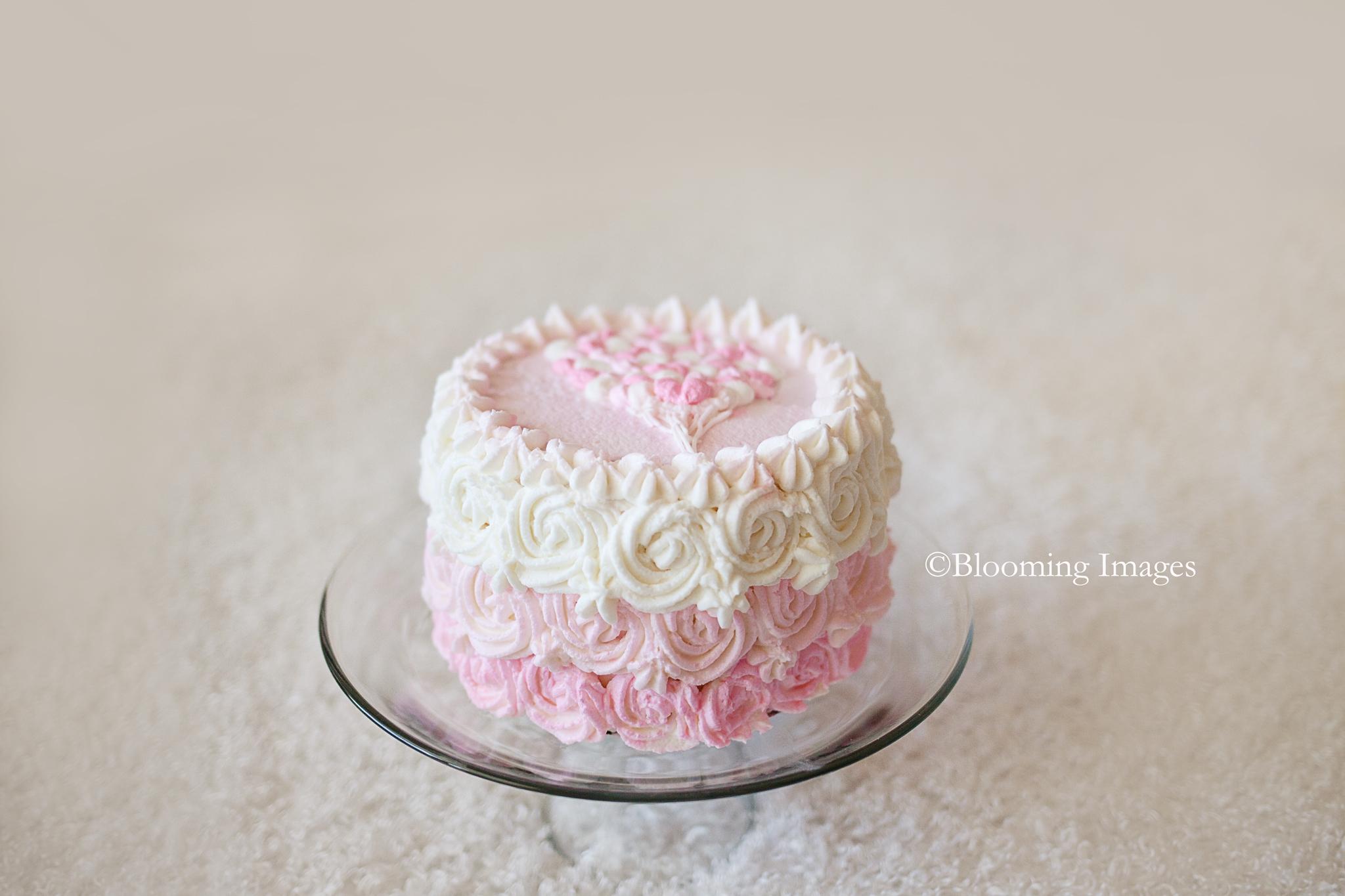 Cake Smash Photographers