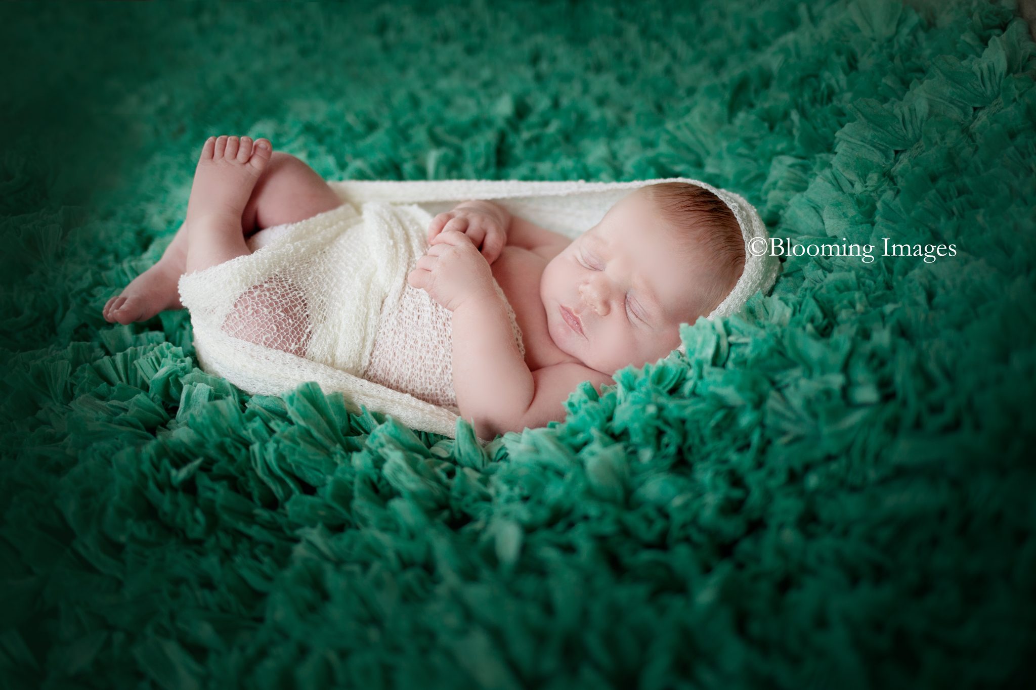 Albuquerque Newborn Photographer, Albuquerque Newborn Photographers, Santa Fe Newborn Photographers, Taos Newborn Photographers, New Mexico Newborn Photographer, New Mexico Newborn Photographers, Albuquerque baby photographers