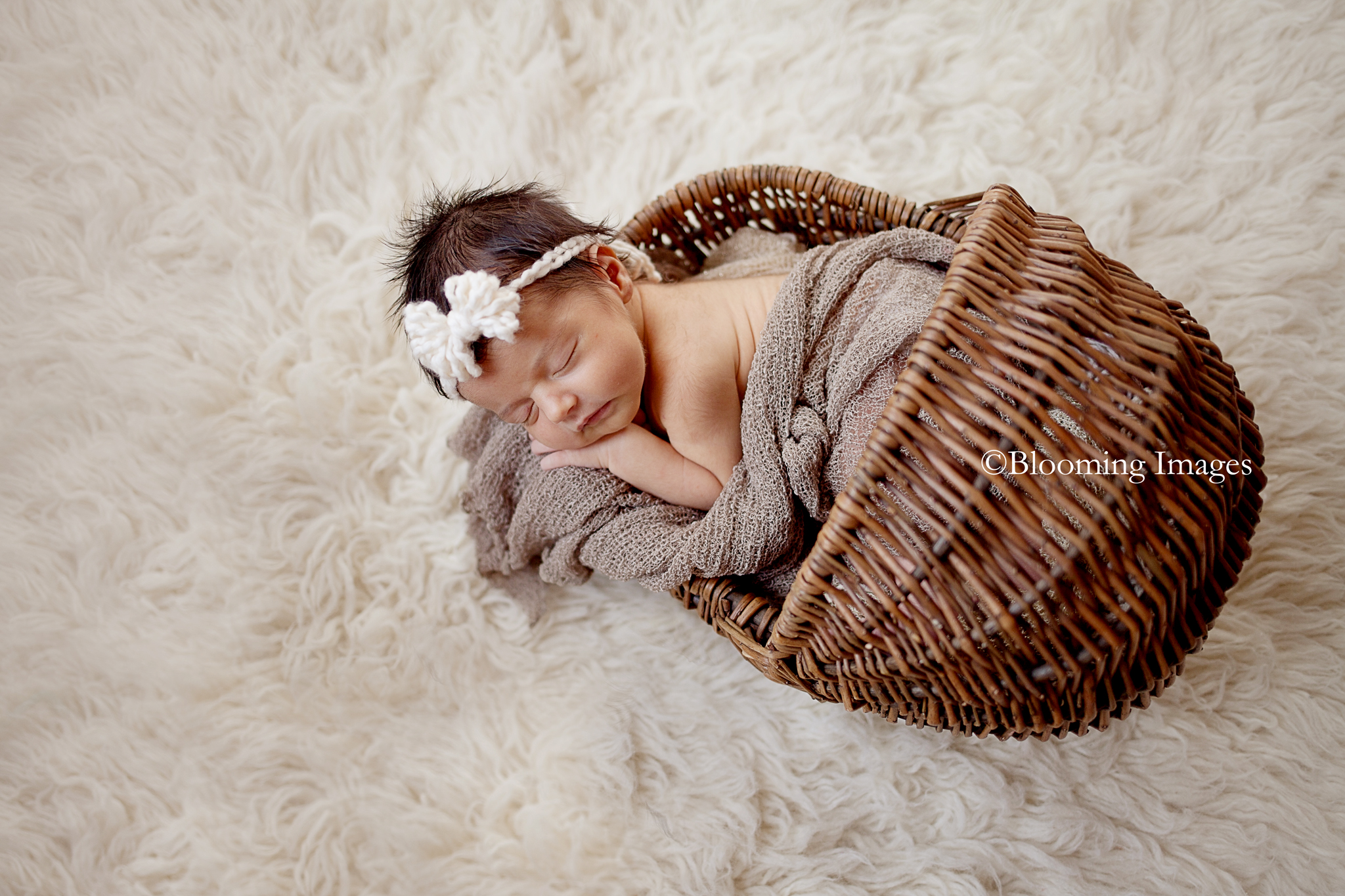 Albuquerque Newborn Photographer,Albuquerque Newborn Photographers, Newborn Photographers in Albuquerque, Newborn Photographer in Albuquerque, Santa Fe Newborn Photographers, Santa Fe Newborn Photographer