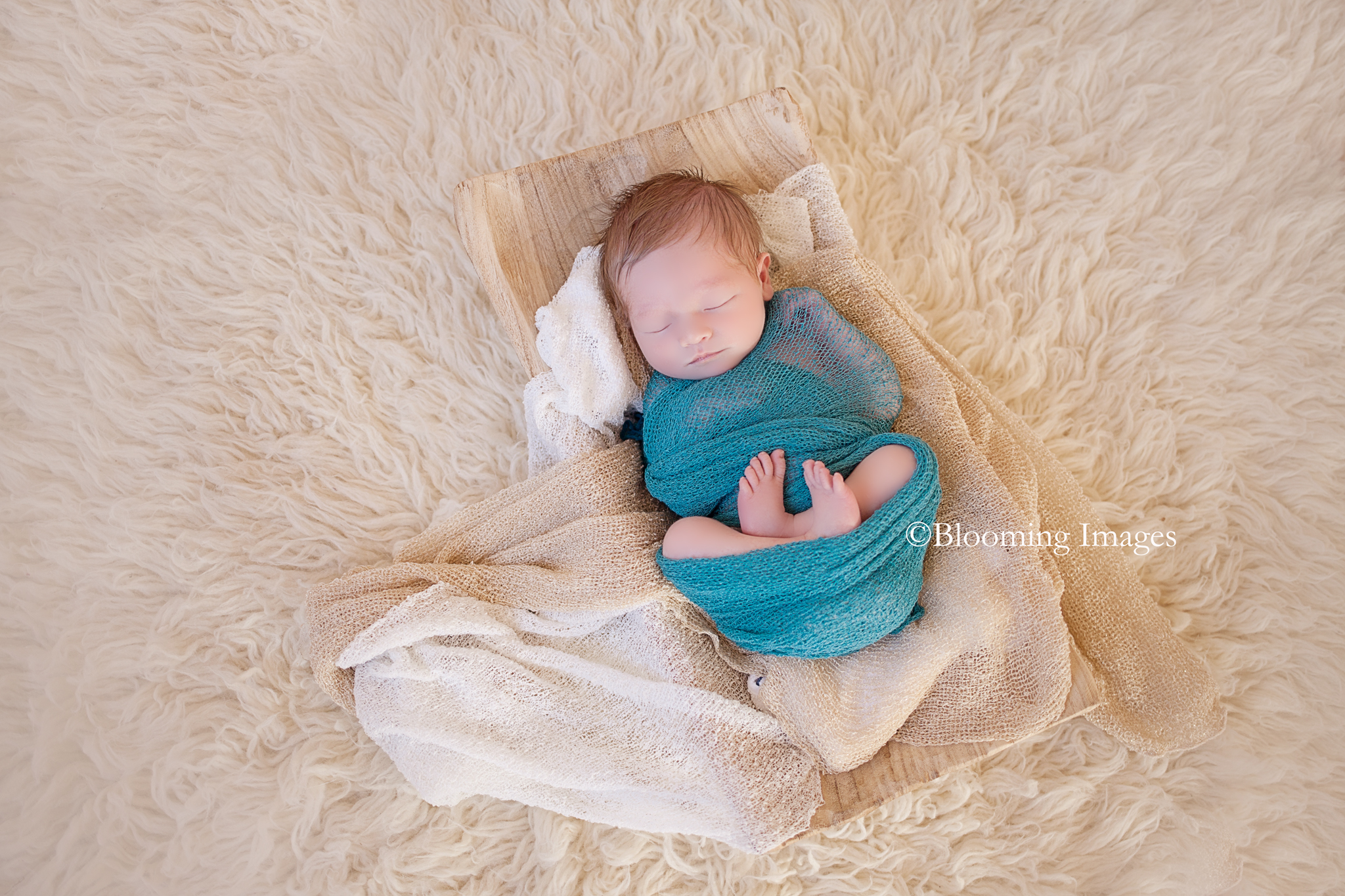 Albuquerque Newborn Photographer, Albuquerque Newborn Photographers, New Mexico Newborn Photographer, New Mexico Newborn Photographers, Baby Photographer in Albuquerque, Albuquerque baby photographer, Albuquerque baby photographers