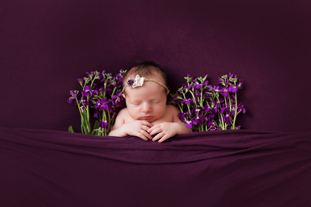 VioletNewborn-66 copy.jpg