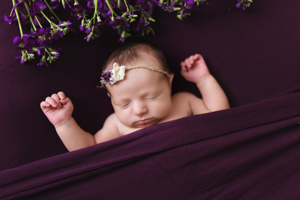 VioletNewborn-71 copy.jpg