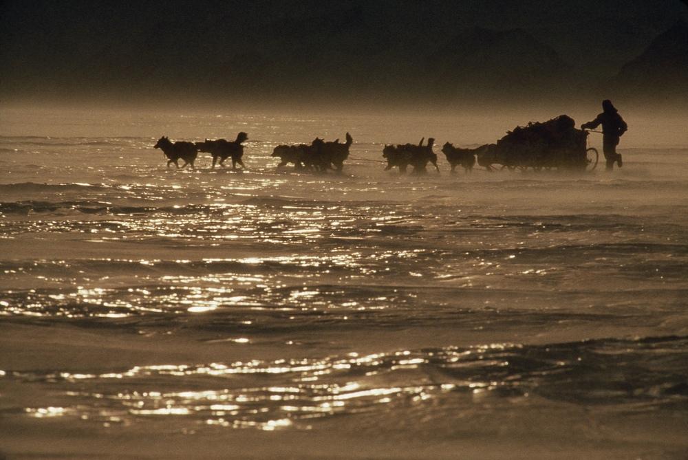 Sastrugi, the frozen waves described by Geoff in his journal. Photo ©Will Steger by Rick Ridgeway