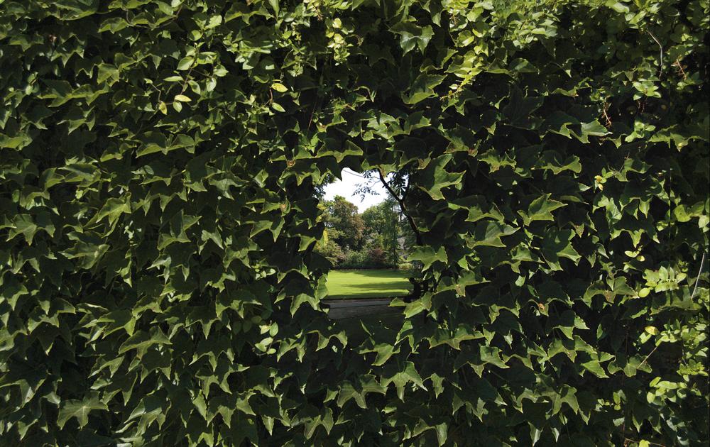 Secret Gardens (detail),Chambers St.NYC,  digitalprint on mesh