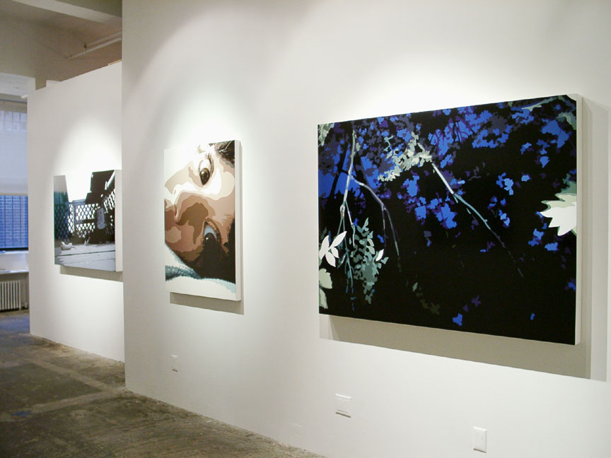 Last Sties,   Installation View  , Luxe Gallery, NY