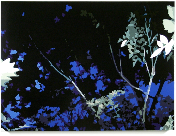 Woods, 2003, 45 x 60, Oil Enamel on Canvas