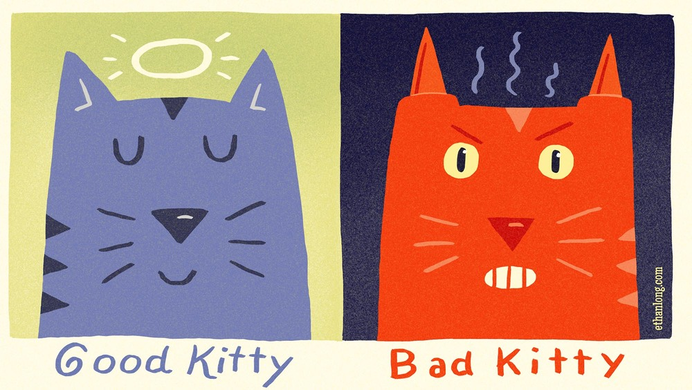 good kitty-bad kitty.jpg