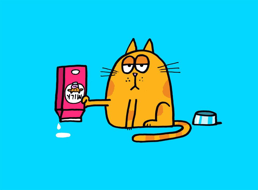 cat_milk.jpg