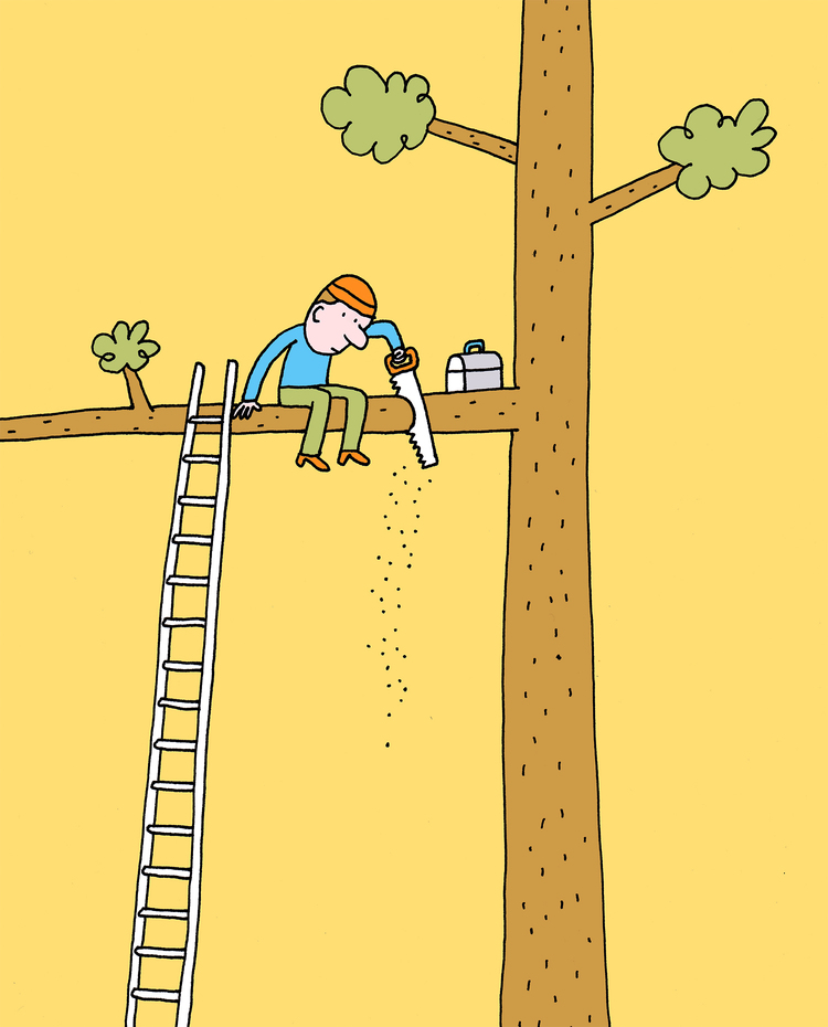 tree_limb_1500.jpg