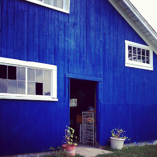 The Blue Barn at Stone Soup Farm, where several Shiprock musicals were staged.
