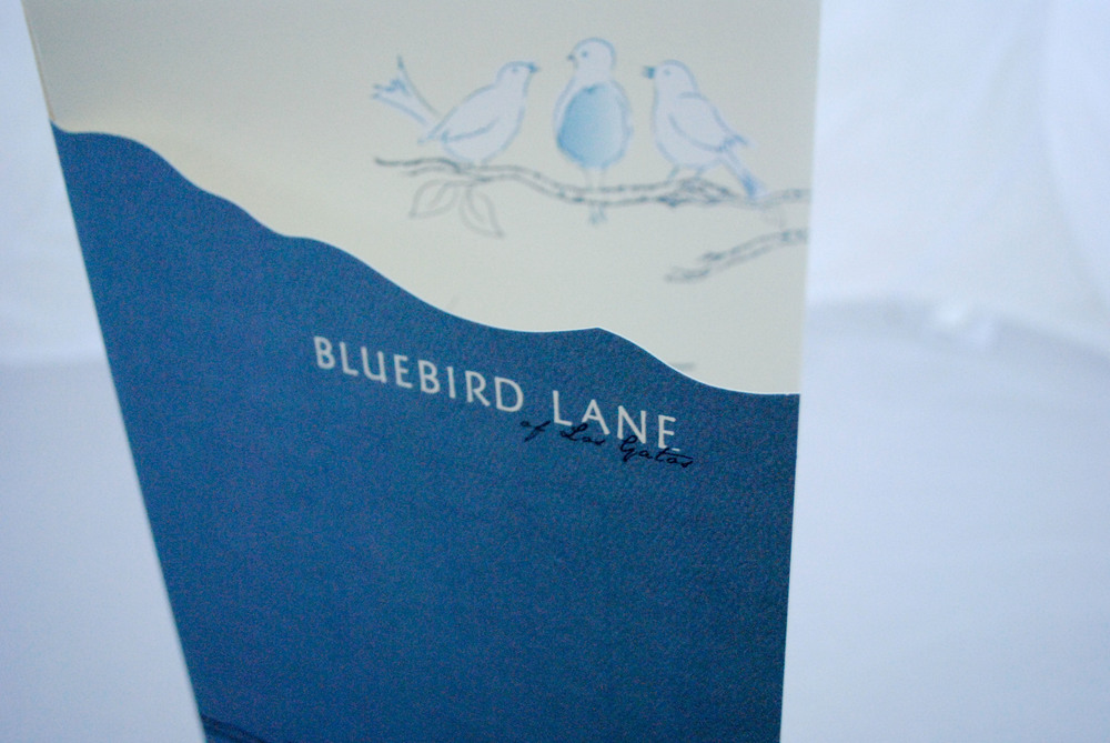 Bluebird Lane Brochure