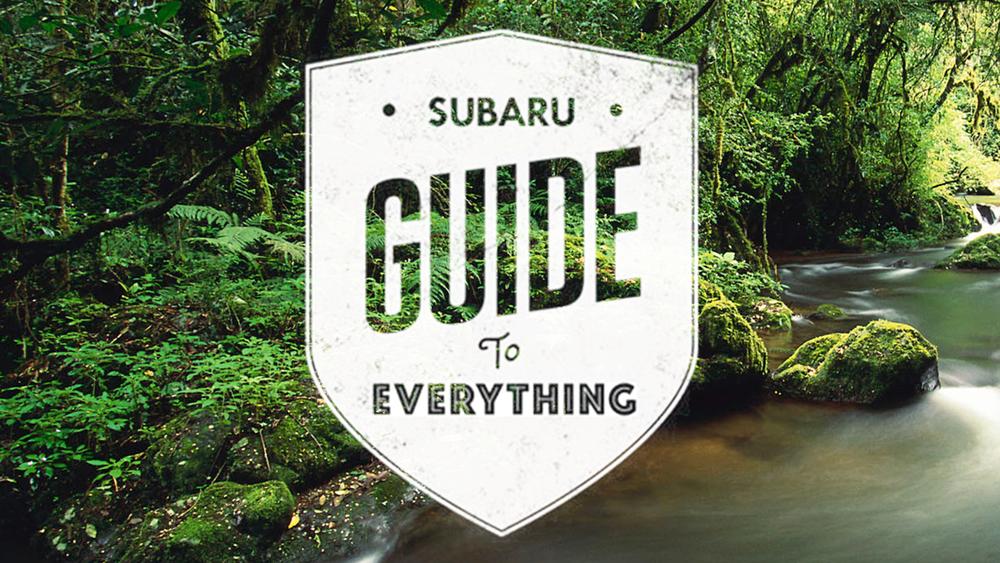 Guide to Everything Facebook App / subaru