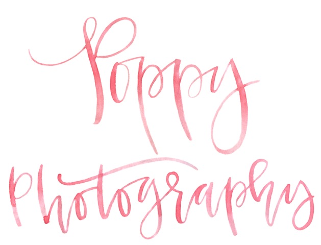 Poppy Photography
