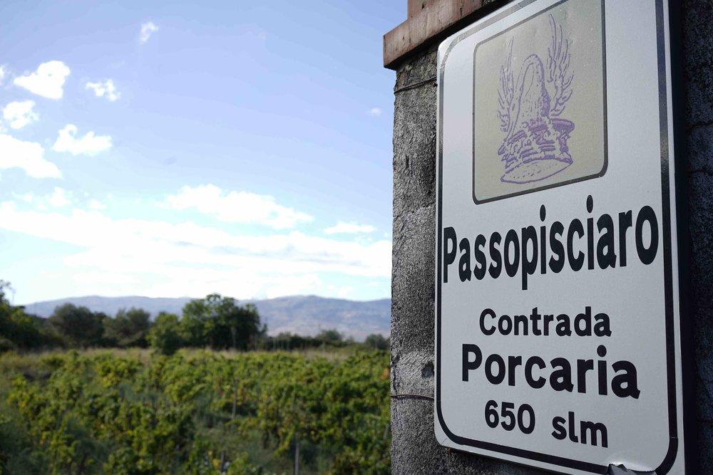 Porcaria! Contrada P at Passopisciaro!