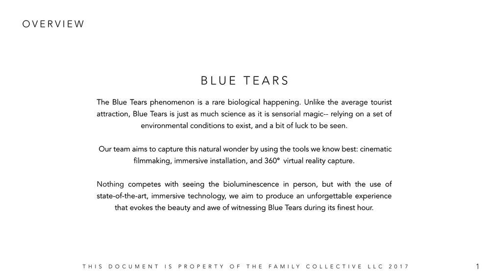 Blue_Tears_Experience_02.jpg