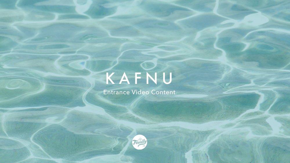 kafnu_concept_02_interactive.jpeg