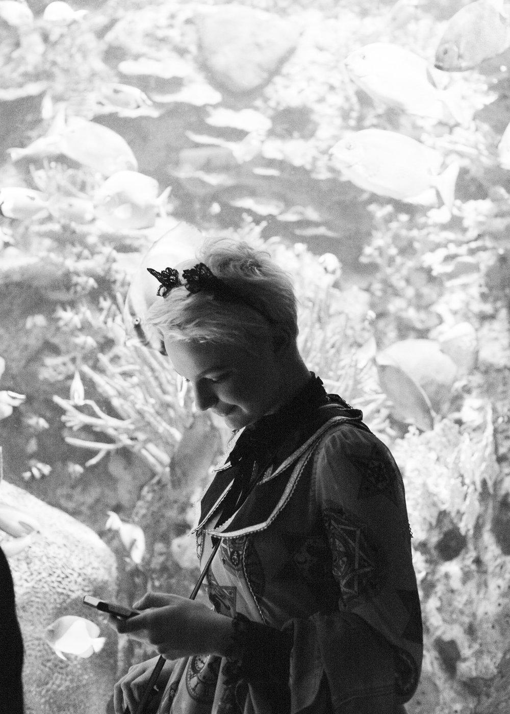 aquarium_lolitas-17.jpg