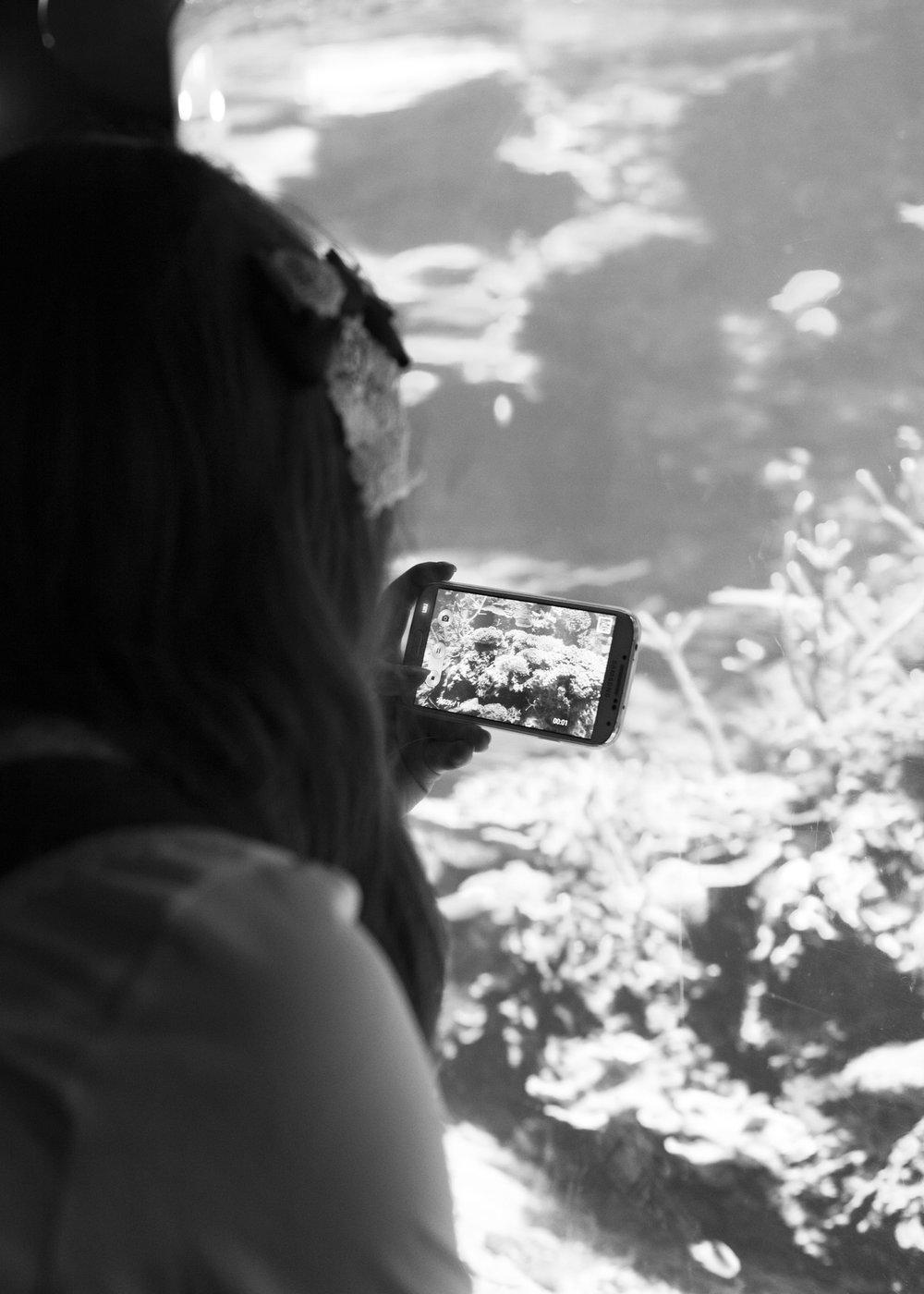 aquarium_lolitas-27.jpg